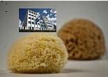 «Σφουγγάρι» στα άσχημα νέα το Χρηματιστήριο Αθηνών